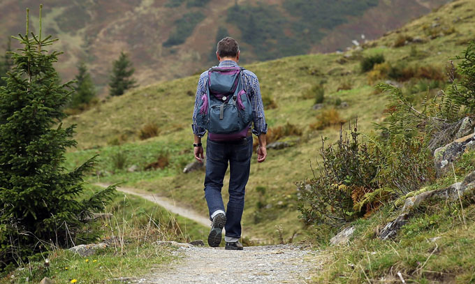 Wandern Rucksack Wald